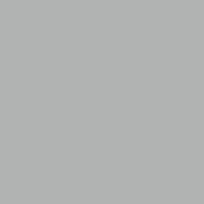 Greencoat PLX PRO BT – Metallic Silver